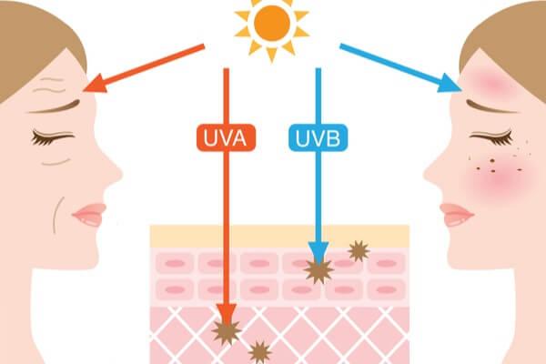 UVAとUVBが肌に及ぼす影響
