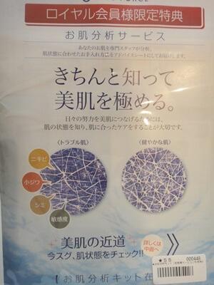 肌分析ライスフォース