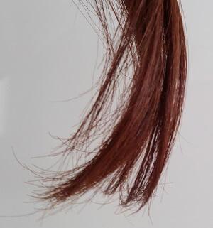 しっとりした髪